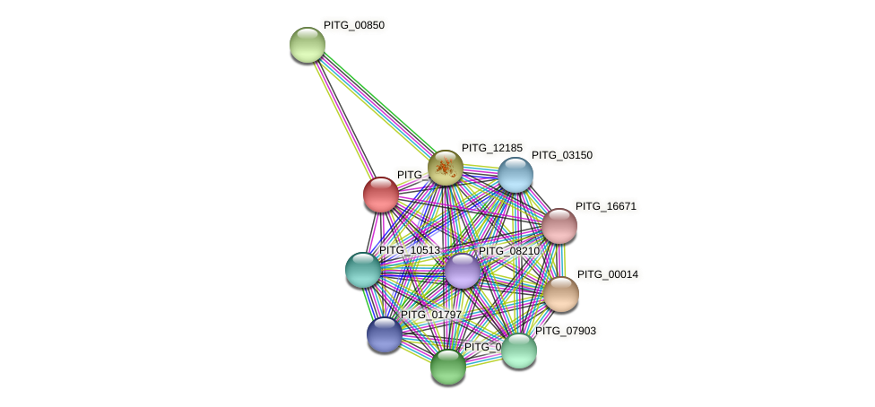 PITG_21389 protein (Phytophthora infestans) - STRING interaction network