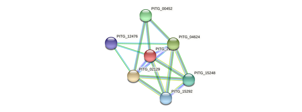 PITG_21468 protein (Phytophthora infestans) - STRING interaction network