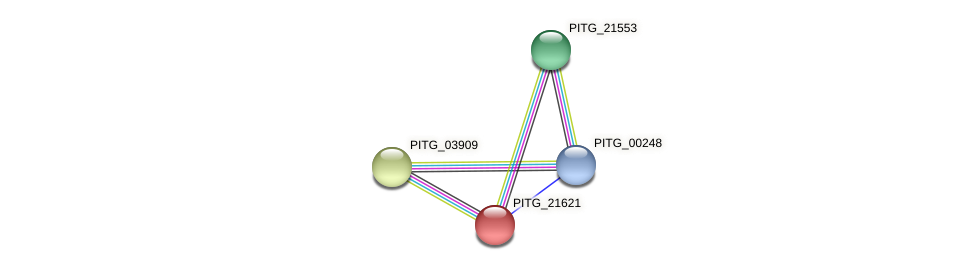 PITG_21621 protein (Phytophthora infestans) - STRING interaction network