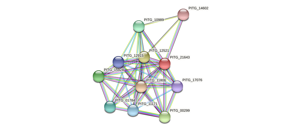 PITG_21643 protein (Phytophthora infestans) - STRING interaction network