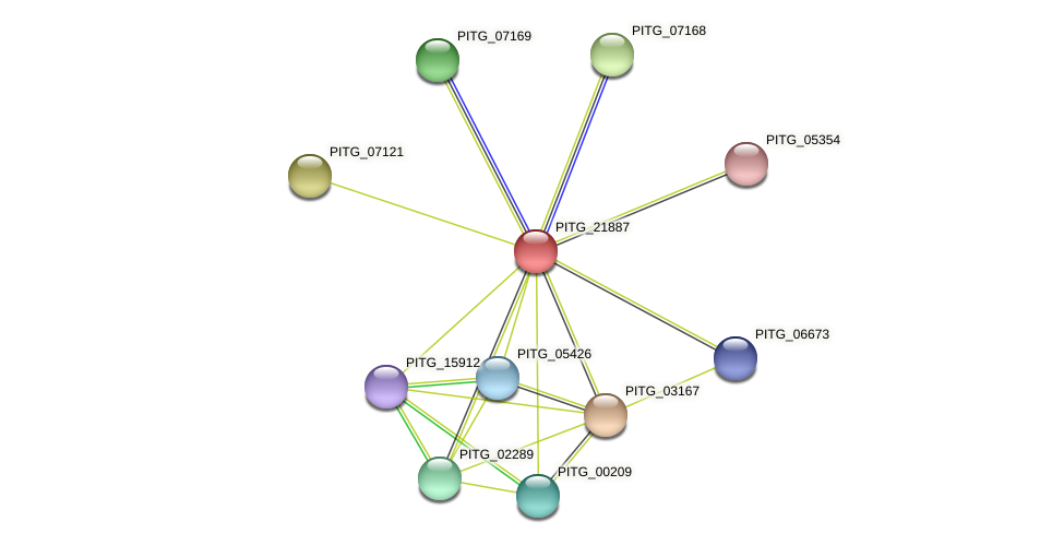 PITG_21887 protein (Phytophthora infestans) - STRING interaction network