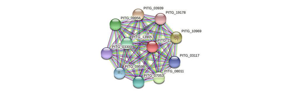 PITG_22023 protein (Phytophthora infestans) - STRING interaction network