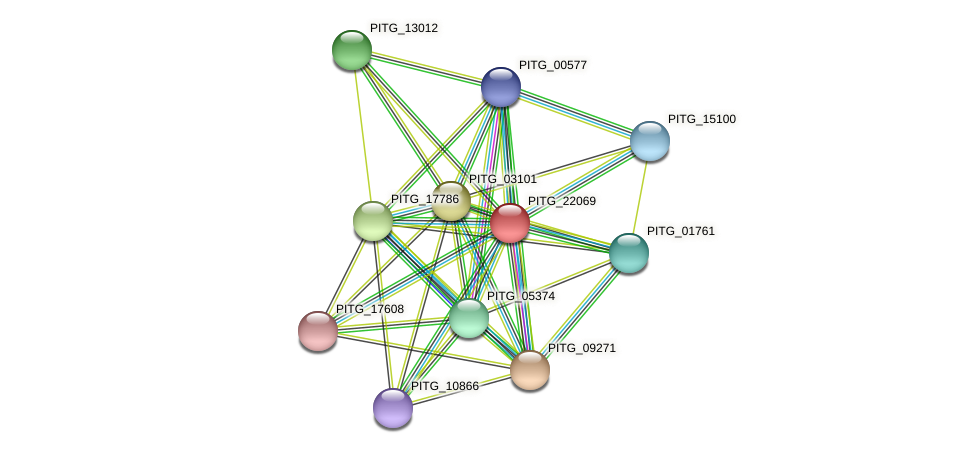 PITG_22069 protein (Phytophthora infestans) - STRING interaction network