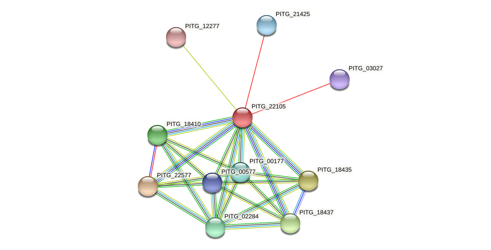 PITG_22105 protein (Phytophthora infestans) - STRING interaction network