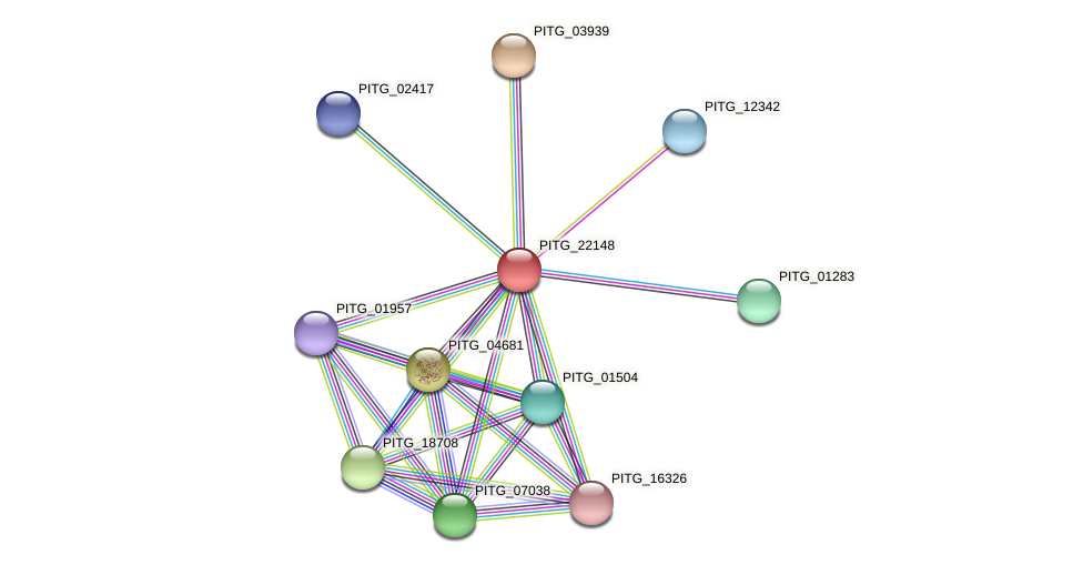 PITG_22148 protein (Phytophthora infestans) - STRING interaction network