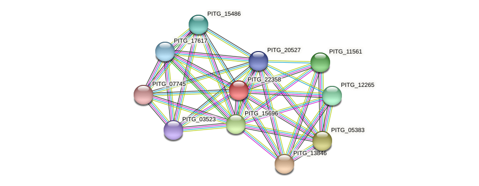 PITG_22358 protein (Phytophthora infestans) - STRING interaction network