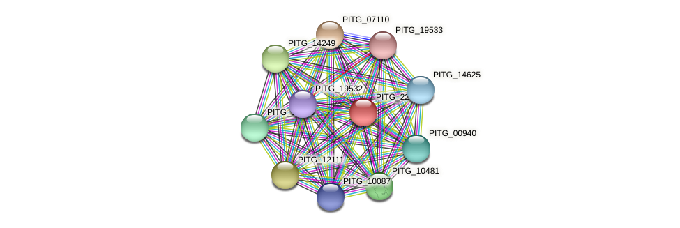 PITG_22631 protein (Phytophthora infestans) - STRING interaction network