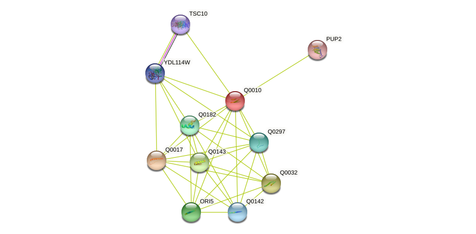 Q0010 protein (Saccharomyces cerevisiae) - STRING interaction network