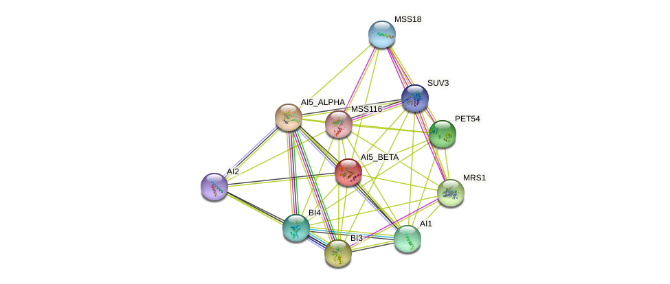 AI5_BETA protein (Saccharomyces cerevisiae) - STRING interaction network