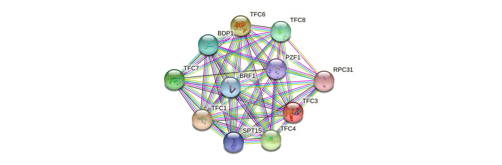 TFC3 protein (Saccharomyces cerevisiae) - STRING interaction network