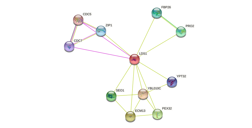 LDS1 protein (Saccharomyces cerevisiae) - STRING interaction network