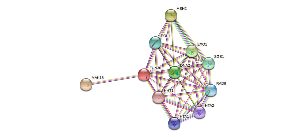 FUN30 protein (Saccharomyces cerevisiae) - STRING interaction network