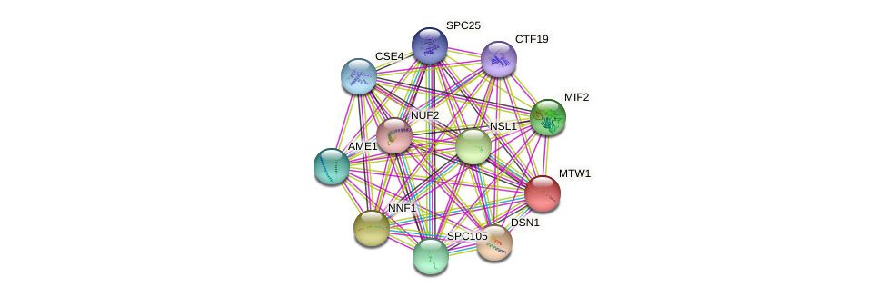 MTW1 protein (Saccharomyces cerevisiae) - STRING interaction network