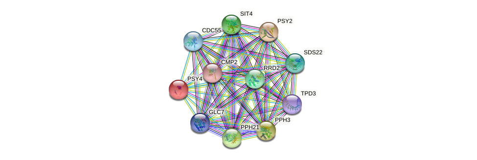 PSY4 protein (Saccharomyces cerevisiae) - STRING interaction network