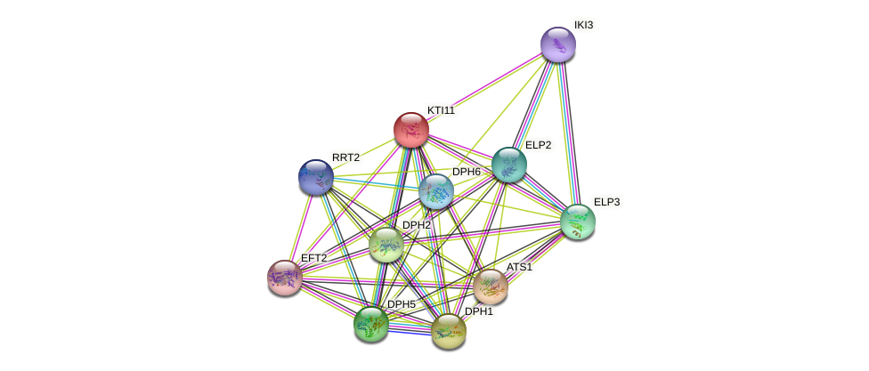 KTI11 protein (Saccharomyces cerevisiae) - STRING interaction network