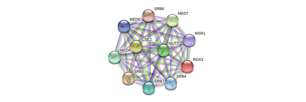 ROX3 protein (Saccharomyces cerevisiae) - STRING interaction network
