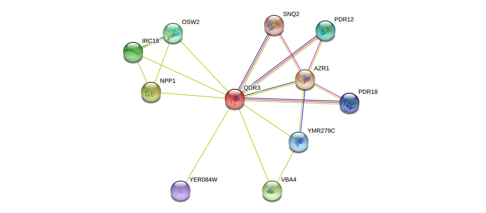 QDR3 protein (Saccharomyces cerevisiae) - STRING interaction network