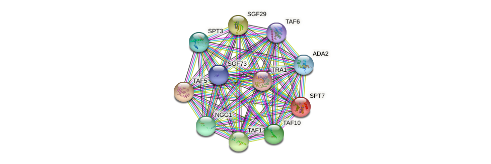 SPT7 protein (Saccharomyces cerevisiae) - STRING interaction network