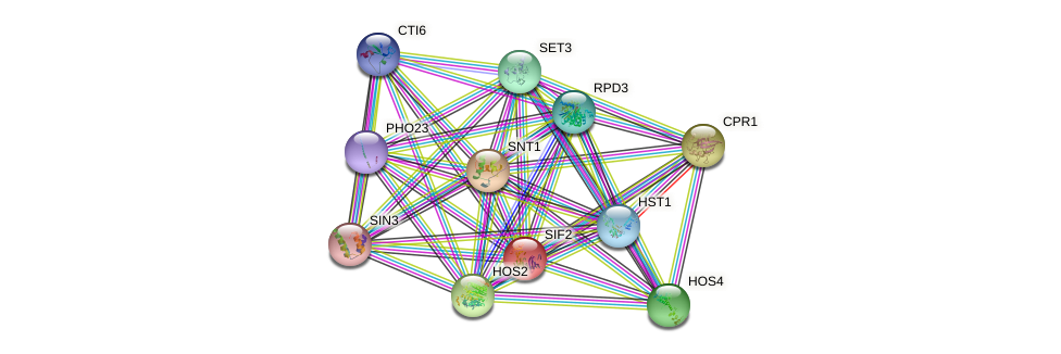 SIF2 protein (Saccharomyces cerevisiae) - STRING interaction network