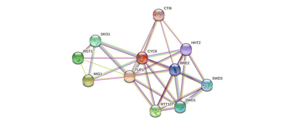 CYC8 protein (Saccharomyces cerevisiae) - STRING interaction network