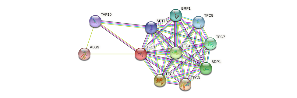 TFC1 protein (Saccharomyces cerevisiae) - STRING interaction network