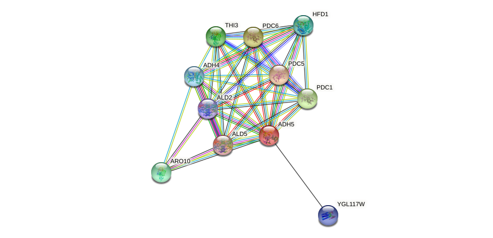ADH5 protein (Saccharomyces cerevisiae) - STRING interaction network