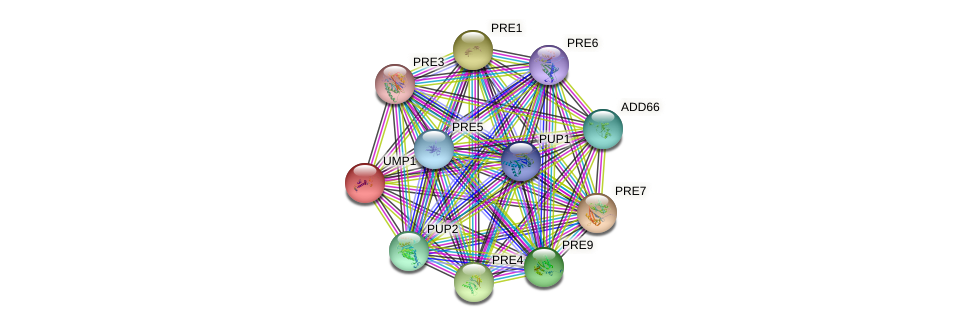 UMP1 protein (Saccharomyces cerevisiae) - STRING interaction network