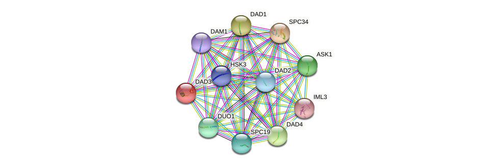 DAD3 protein (Saccharomyces cerevisiae) - STRING interaction network