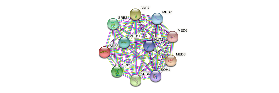 SRB6 protein (Saccharomyces cerevisiae) - STRING interaction network