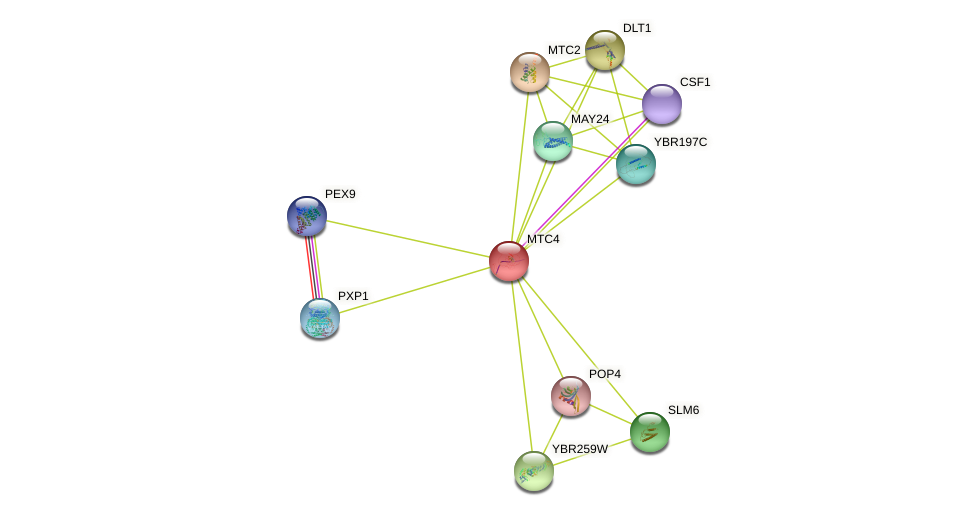 MTC4 protein (Saccharomyces cerevisiae) - STRING interaction network