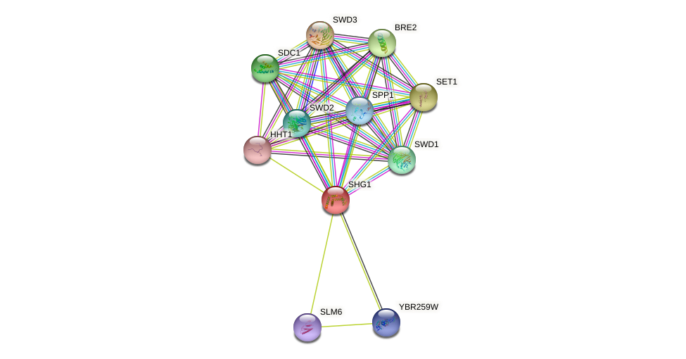 SHG1 protein (Saccharomyces cerevisiae) - STRING interaction network