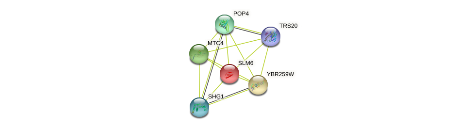 SLM6 protein (Saccharomyces cerevisiae) - STRING interaction network