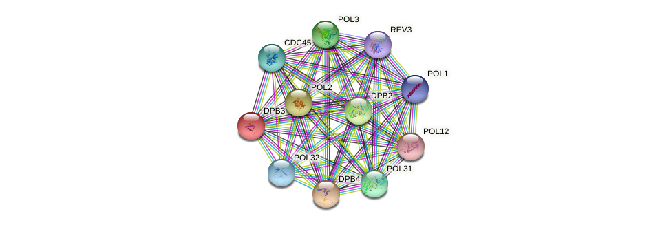 DPB3 protein (Saccharomyces cerevisiae) - STRING interaction network