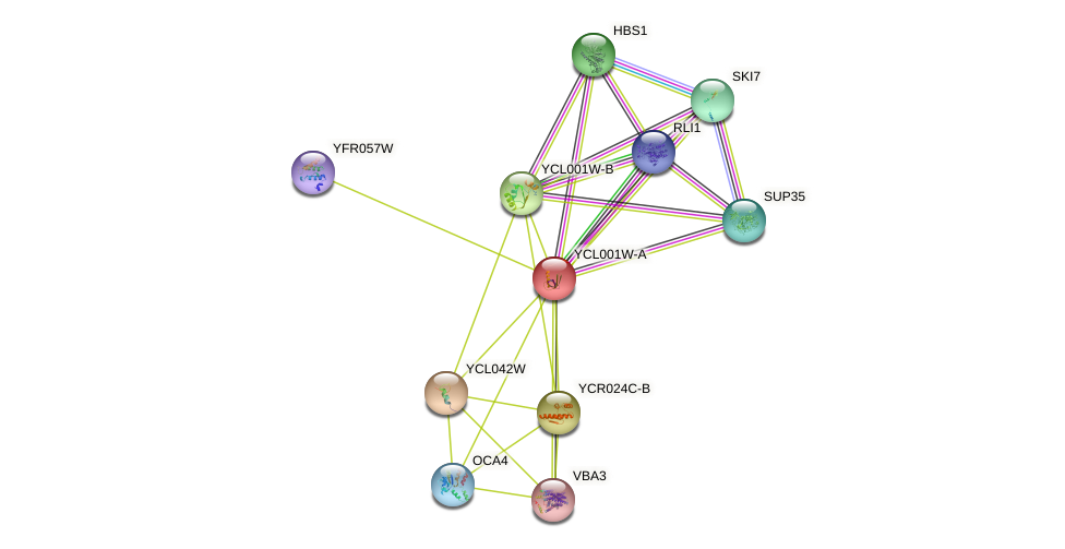 YCL001W-A protein (Saccharomyces cerevisiae) - STRING interaction network