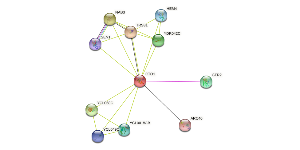 CTO1 protein (Saccharomyces cerevisiae) - STRING interaction network