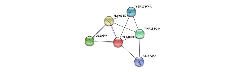 YCR018C-A protein (Saccharomyces cerevisiae) - STRING interaction network