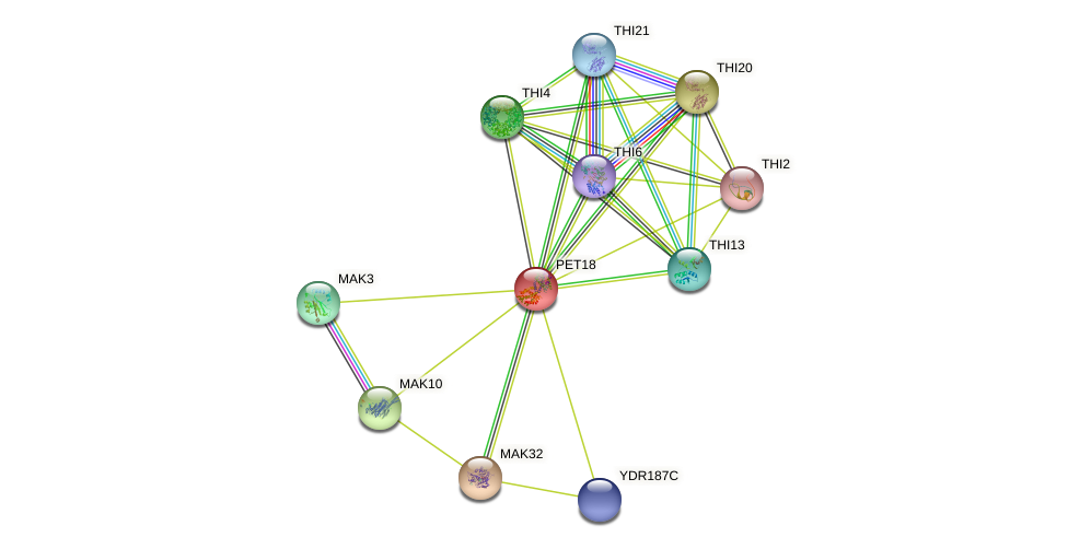 PET18 protein (Saccharomyces cerevisiae) - STRING interaction network