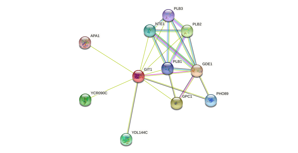 GIT1 protein (Saccharomyces cerevisiae) - STRING interaction network