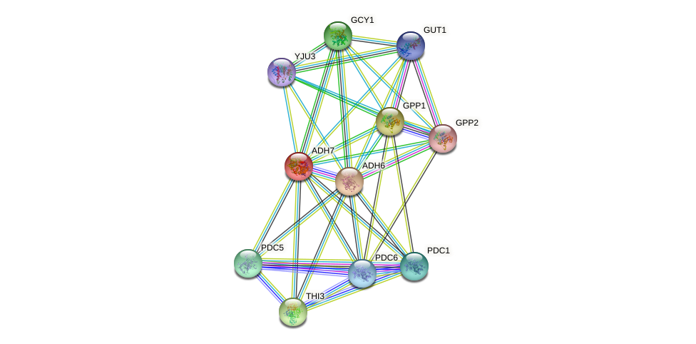 ADH7 protein (Saccharomyces cerevisiae) - STRING interaction network