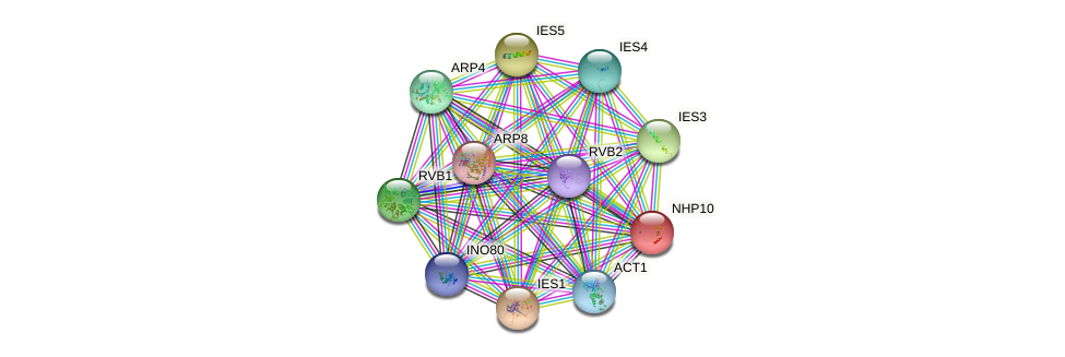NHP10 protein (Saccharomyces cerevisiae) - STRING interaction network