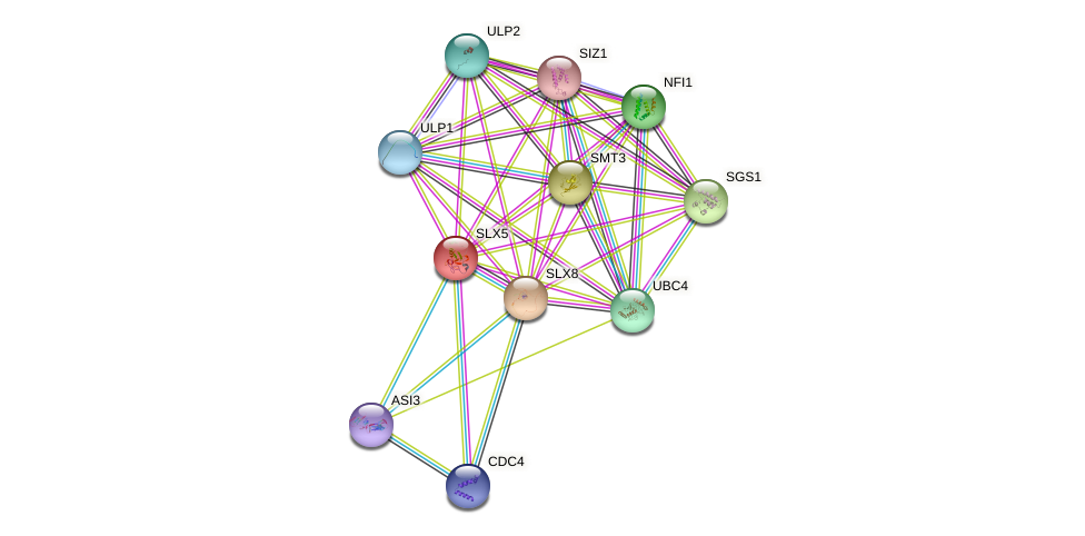 SLX5 protein (Saccharomyces cerevisiae) - STRING interaction network