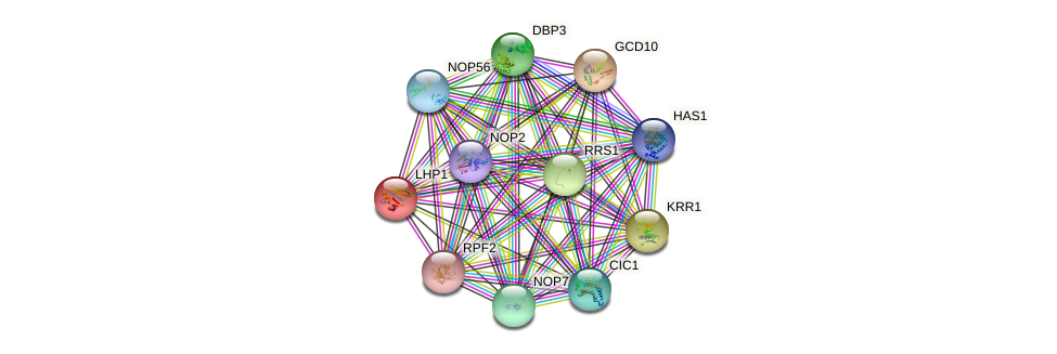 LHP1 protein (Saccharomyces cerevisiae) - STRING interaction network