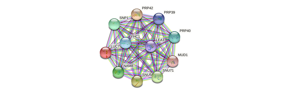 LUC7 protein (Saccharomyces cerevisiae) - STRING interaction network