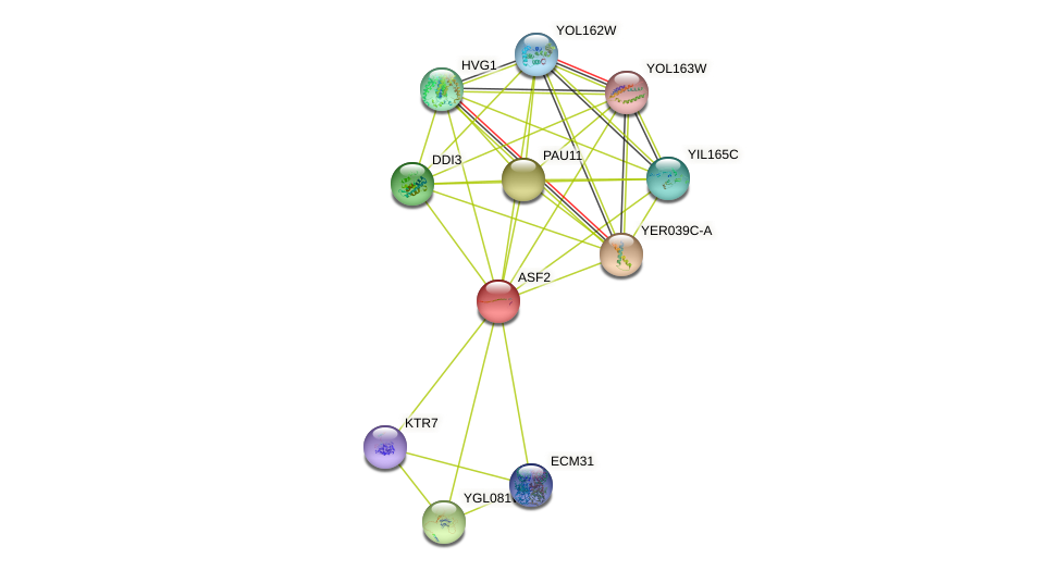 ASF2 protein (Saccharomyces cerevisiae) - STRING interaction network