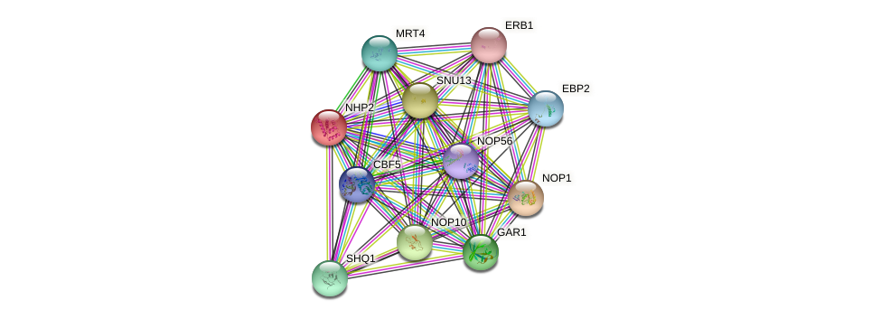 NHP2 protein (Saccharomyces cerevisiae) - STRING interaction network