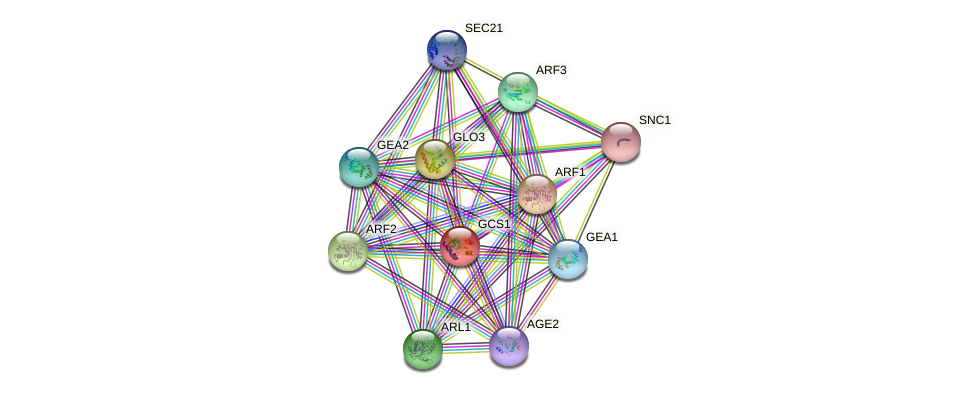 GCS1 protein (Saccharomyces cerevisiae) - STRING interaction network
