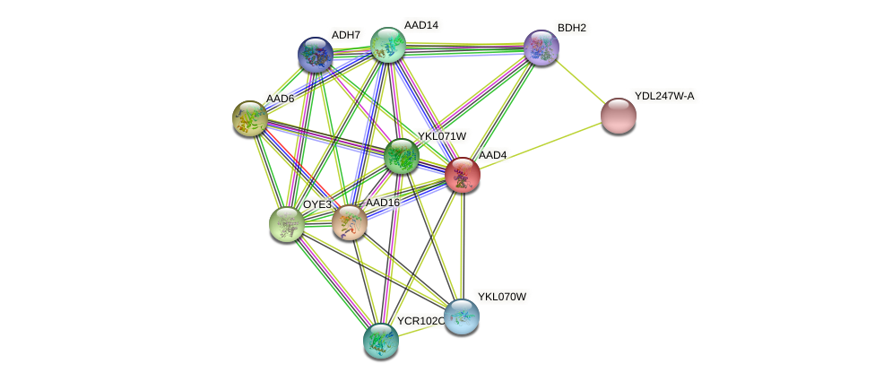 AAD4 protein (Saccharomyces cerevisiae) - STRING interaction network