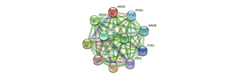 ARO3 protein (Saccharomyces cerevisiae) - STRING interaction network