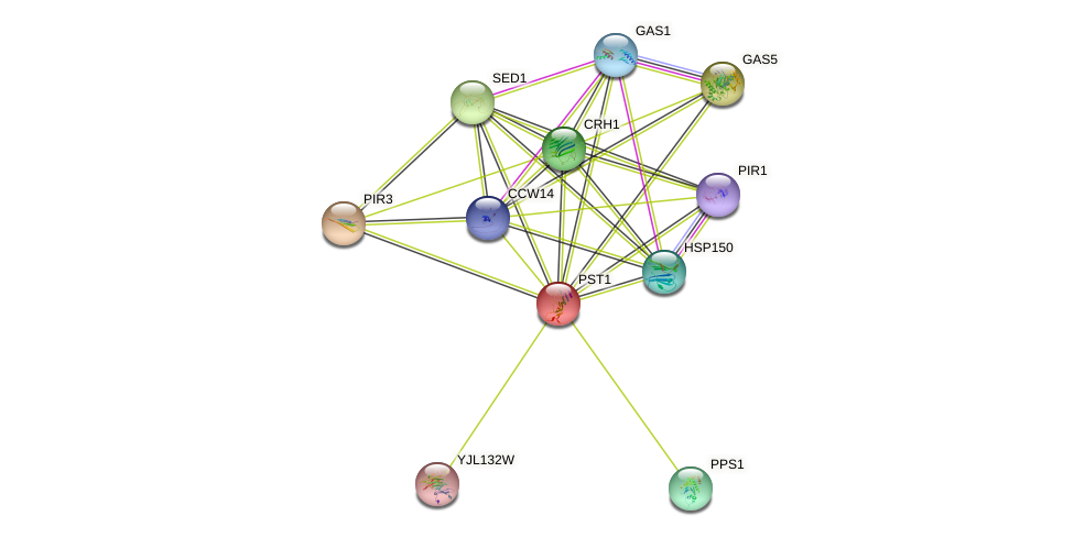 PST1 protein (Saccharomyces cerevisiae) - STRING interaction network