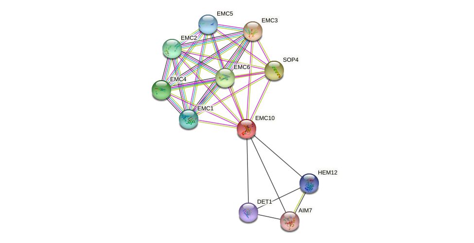 EMC10 protein (Saccharomyces cerevisiae) - STRING interaction network